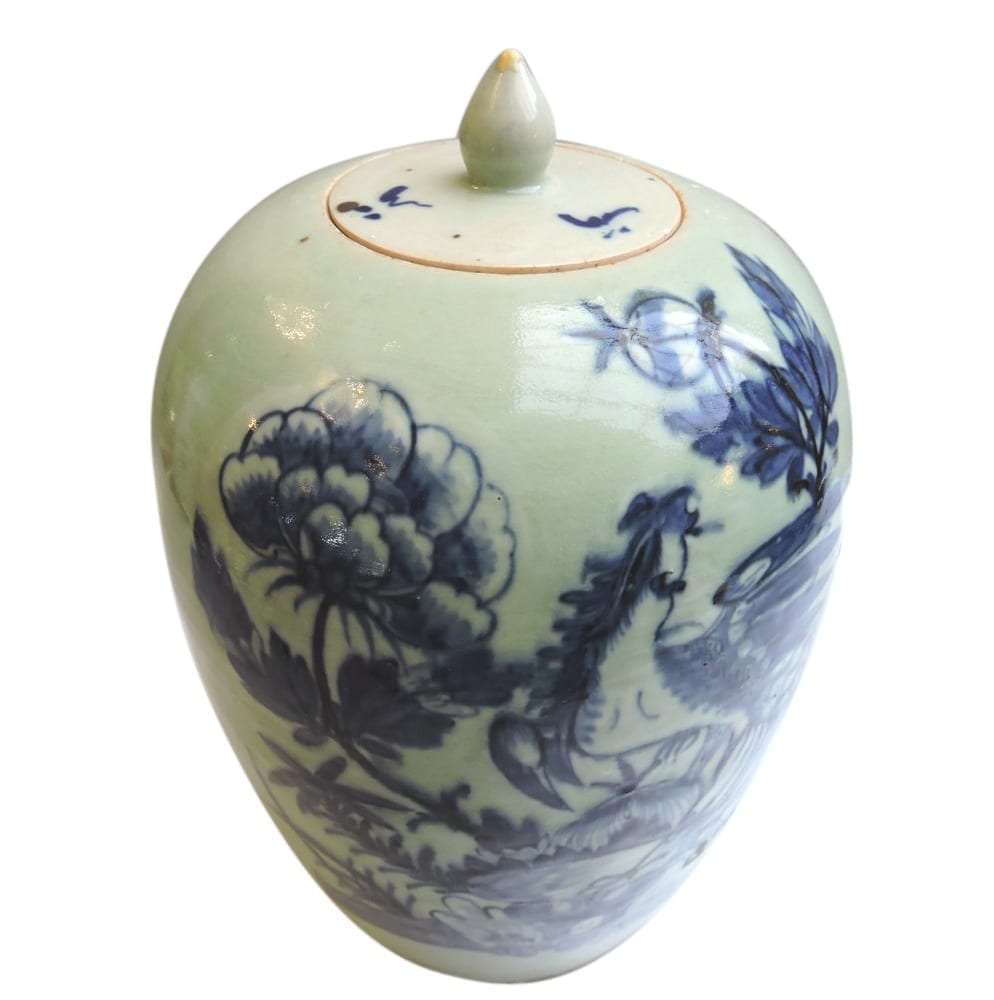 asian - chinesegingerjar-01-1.jpg