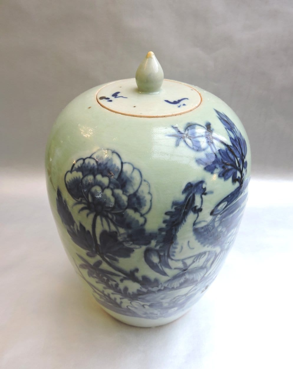 asian - chinesegingerjar-01.jpg